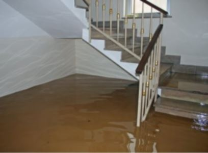 Emergency water removal in Islandia by Tri State Flood Inc