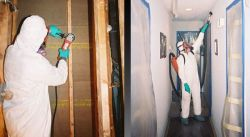 Mold Removal by Tri State Flood Inc